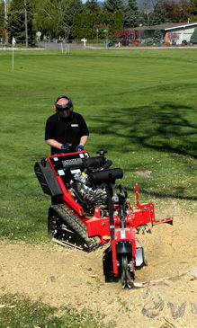 Where to find STUMP GRINDER 31 HP BARRETO in Lafayette