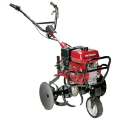 Where to rent TILLER - 5HP Center Tine in Lafayette LA